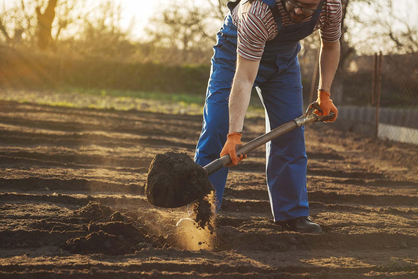 Man uses garden tools in yard